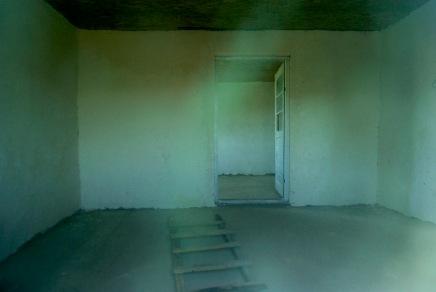 01-Frames of Life-SabinaUlubeanu